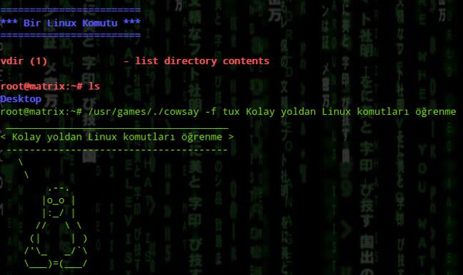 Linux Komutları Ekran Çıktısı
